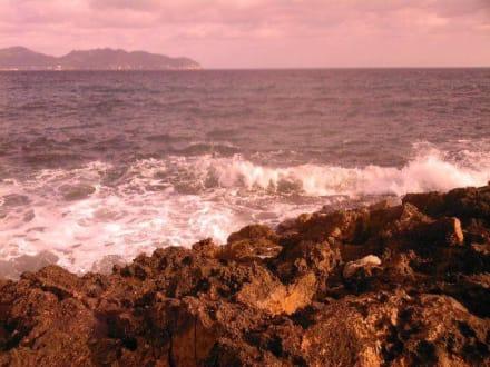 Klippen - Naturschutzgebiet Punta de n'Amer