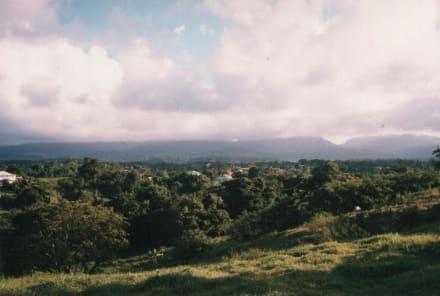 Landesinnere auf der Atlantikseite - Nationalpark Guadeloupe