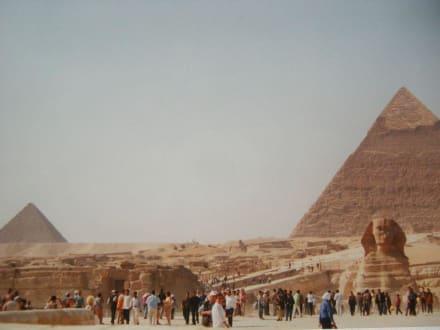 Die Sphinx vor der Pyramide - Pyramiden von Gizeh
