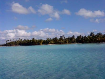 Ausflug nach Saona - Isla Saona