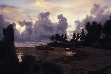 Morgendämmerung mit Boot - Sonnenaufgang
