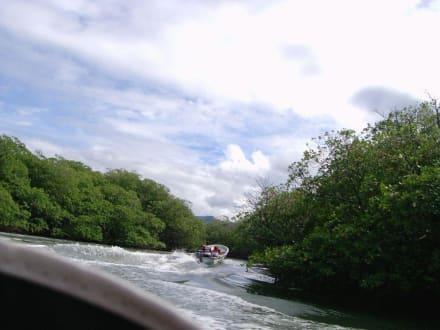 Ab durch die Mangroven - Paradies Insel