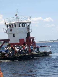 Orinoco-Delta - Orinoco Delta