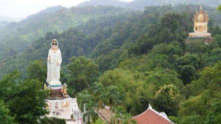 Private Tempel Tour - Wat Suwan Kuha Tempel