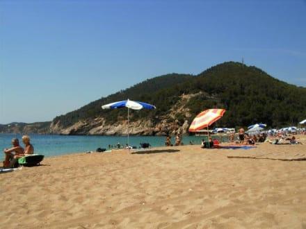 Cala San Vicente - Strand Cala San Vicente