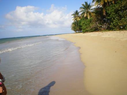 Spazieren - Grand Bahia Principe El Portillo