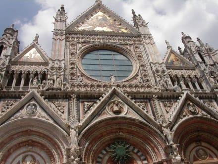 Portal des Doms von Siena - Dom von Siena