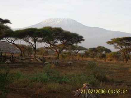 Das Dach Afrikas - Nationalpark Kilimandscharo / Kilimanjaro