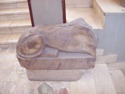 Tier ohne Kopf - Freilichtmuseum Memphis