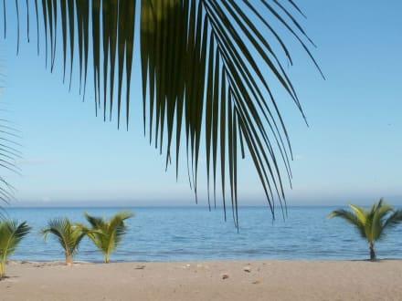 Blick auf Playa Mantas - Playa Mantas