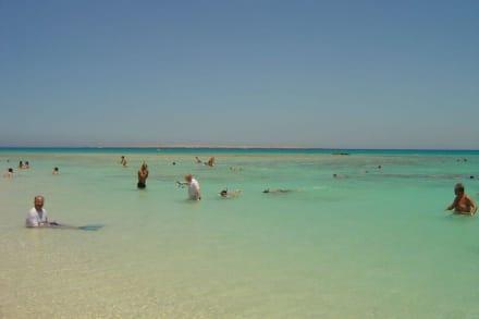 Schnorchelausflug zur Insel - Schnorcheln Makadi Bay