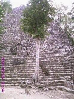 Coba Pyramide - Ruinenstätte Cobá