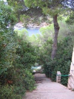 120 steile Stufen - Cala de s'Almonia