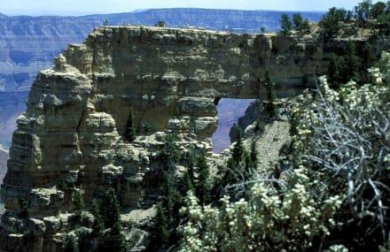 Aussichtspunkt - Grand Canyon