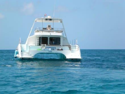 Jacht - Isla Saona