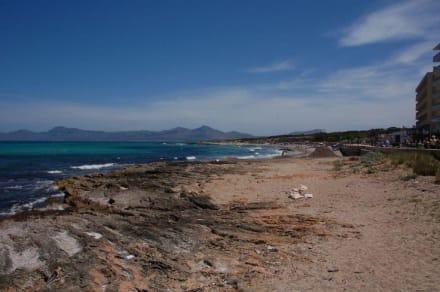 Am Wasser entlang - Naturschutzgebiet Dunes de Son Real