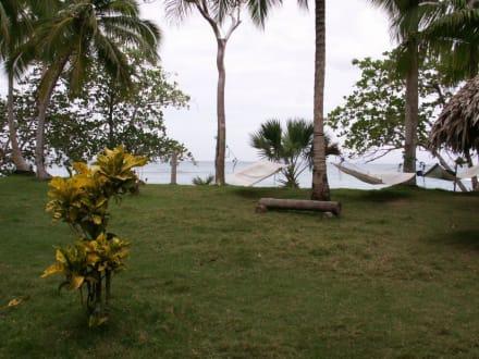 Hängematten - Playa Esmeralda - Punta del Rey