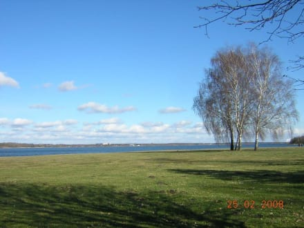Der Senftenberger See - Senftenberger See
