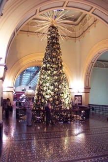 Tannenbaum in der obersten Etage - Queen Victoria Building