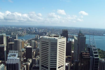 Skyline und Harbour Bridge - Sydney Tower