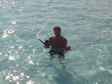 Die größte Badewanne der Welt! - Isla Saona