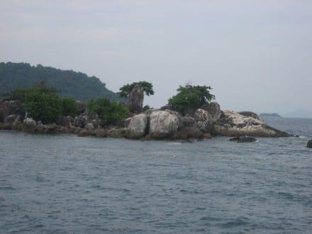 Insel vor Koh Rung - Schnorchel-Bootstour Kon Tiki Koh Chang