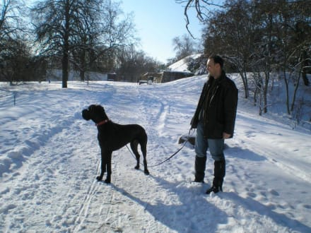Höhenpark im Winter - Höhenpark Killesberg