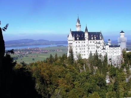 Mit Blick auf Schloß Neuschwanstein - Schloss Neuschwanstein