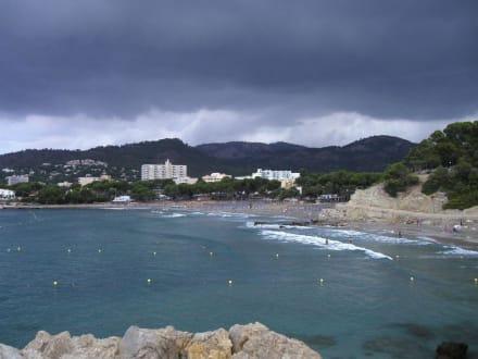 Panorama - Strand Paguera/Peguera