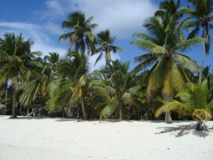 Karibik Traum - Isla Saona