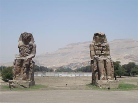 Memnon Kolosse - Kolosse von Memnon
