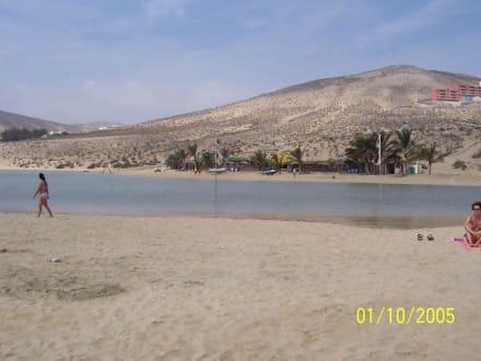 Blick vom Meer aus - René Egli Fuerteventura by Meliá - Windsurfing & Kiteboarding Holidays