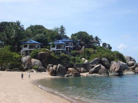Strand - Coral Cove Strand
