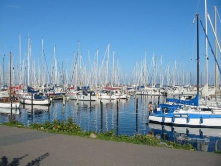 Yachthafen - Yachthafen Heiligenhafen
