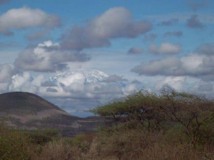 Kilimandscharo - Tsavo West Nationalpark