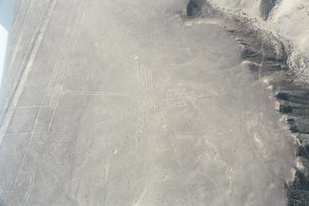 der  kolibri - Nazca-Linien