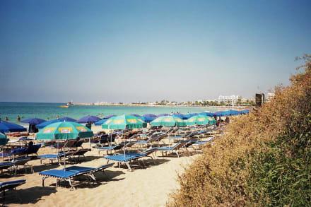 Strand von Ayia Napa - Strand Ayia Napa/Agia Napa