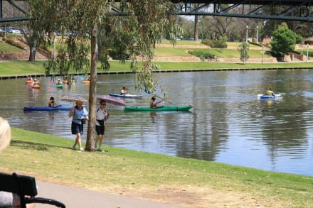 Erholung im Park - Torrens River