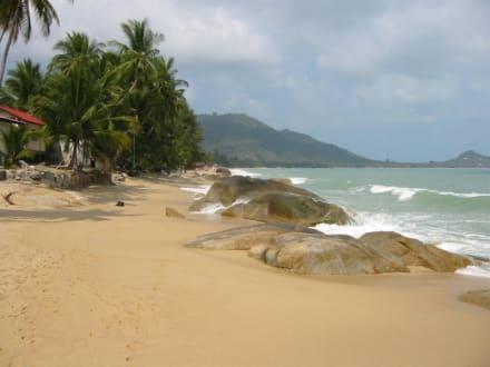 Lamai-Beach - Strand Lamai Beach
