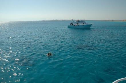 Tauch- und Schnorcheltour - Schnorcheln Hurghada