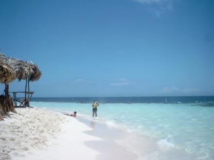 Paradise Island Dom.-Rep - Paradies Insel