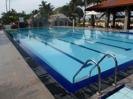 Pool - Hotel Goldi Sands