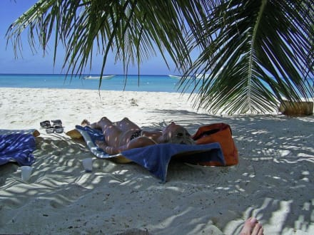 Am Strand Von Saona - Isla Saona