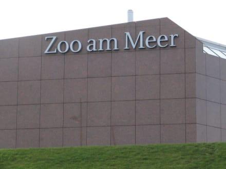 Zoo am Meer in Bremerhaven - Zoo am Meer Bremerhaven