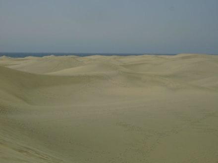 Dünen - Dünen von Maspalomas