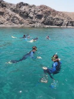 Kleine Schnorchelgruppen, angenehme Atmosphäre - Schnorcheln (Watersports Fuerteventura)