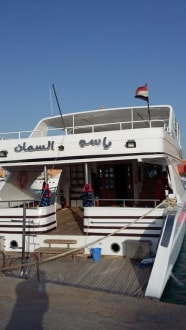 Yassers Boot - Delfinschwimmen Yasser