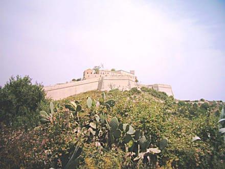 Burg und Altstadt - Altstadt Dalt Vila Ibiza