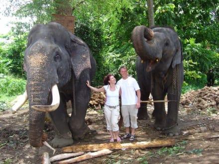 Sandra und Micha - Elefantenwaisenhaus Pinnawela