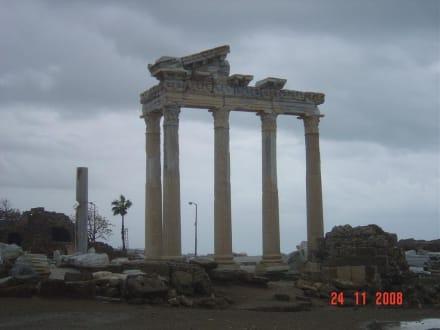 Säulen - Apollon Tempel